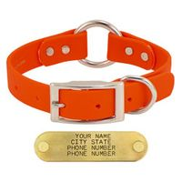 shop ORANGE 1 in. Mendota DuraSoft Hunt Dog Center-Ring Collar