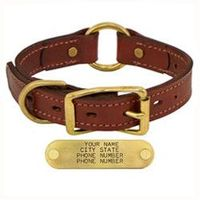 shop 1 in. Mendota Hunt Dog Leather Center-Ring Safety Dog Collar