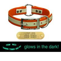 shop 1 in. Night Glow Center Ring Collar with Glow-in-the-Dark Strip