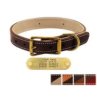 shop 1 in. Premium Deluxe Leather Standard Collars