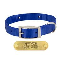 shop BLUE 3/4 in. OmniPet Single Ply Stitched Nylon Collar
