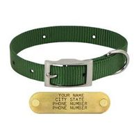 shop GREEN 3/4 in. OmniPet Single Ply Stitched Nylon Collar