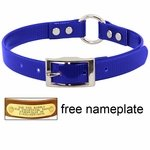 shop 3/4 in. Day Glow Center Ring Puppy / Small Dog Collar