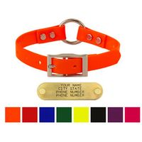 shop 3/4 in. Day Glow Center Ring Puppy / Small Dog Collars