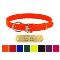 shop 3/4 in. Day Glow D-End Puppy / Small Dog Collars