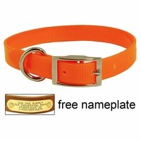 shop 3/4 in. Day Glow Standard Puppy / Small Dog Collar