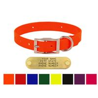 shop 3/4 in. Day Glow Standard Puppy / Small Dog Collars