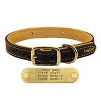 shop 3/4 in. Deer Tan Latigo Leather Dog Collar by OmniPet