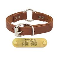 shop 3/4 in. Leather Center Ring Puppy / Small Dog Collar -- 12 inch