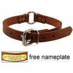 shop 3/4 in. Leather Center Ring Puppy / Small Dog Collar