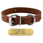 shop 3/4 in. Leather Standard Puppy / Small Dog Collar