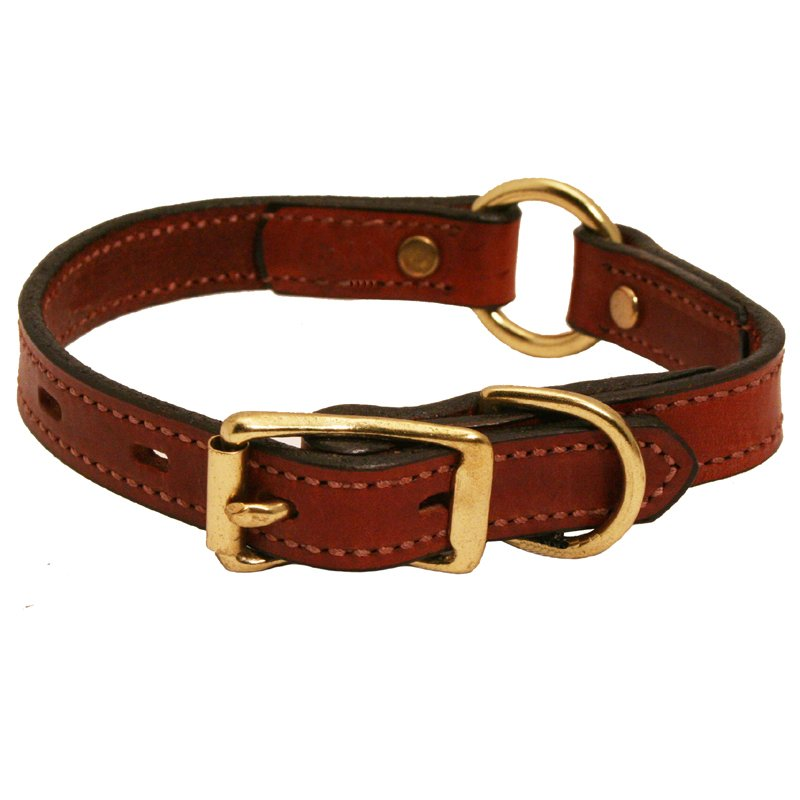 9d8db1bfe38388 ... Collars for Hunting   Active Dogs      Dog Collars with FREE NAME  Plates  %%  Leather Dog Collars for Hunting   Active Dogs~~