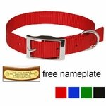 shop PUPPY COLLARS