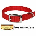 shop 3/4 in. Red OmniPet Single Ply Stitched Nylon Collar