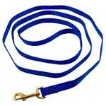 shop 6ft Nylon Lead Blue
