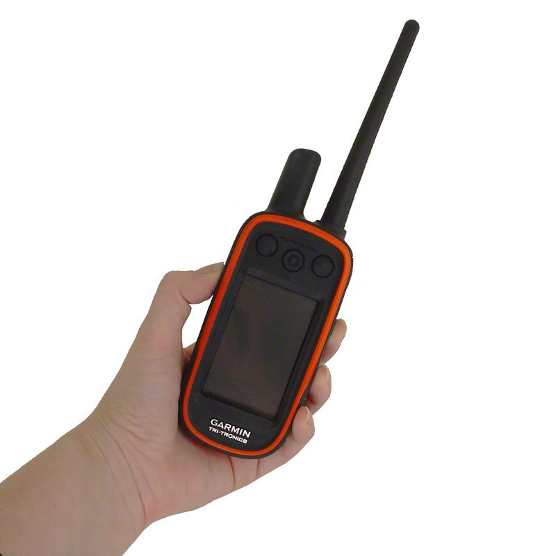 Alpha 100 in Hand with Regular Antenna