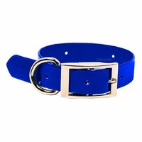 "shop Beagle 1"" WINNERS Pack Blue Collar"