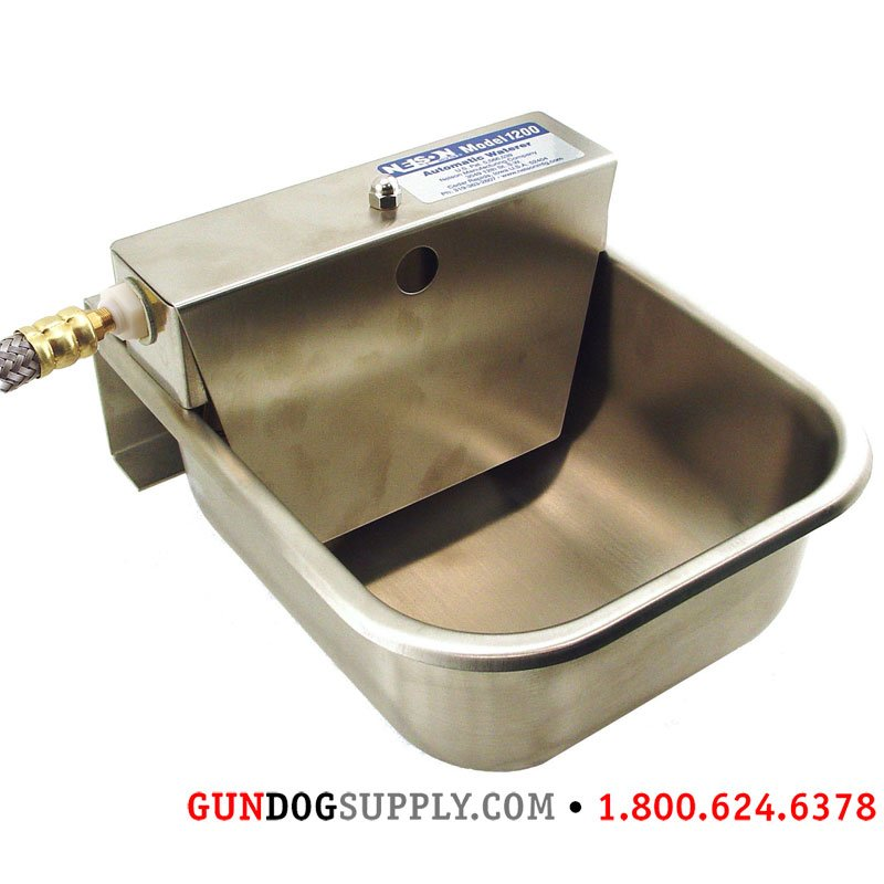 easiest cats for awesomest dogs picture of water and dog automatic waterer id large bowl coolest feeder the