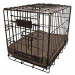 shop Bizzy Bed Cushion in Crate