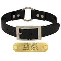 shop BLACK 1 in. Day Glow Center-Ring Collar