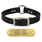 shop BLACK 3/4 in. Center Ring Day Glow Collar