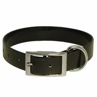 shop BLACK 1 in. Day Glow Standard Collar