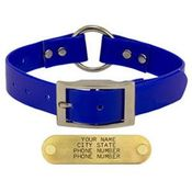 shop BLUE 1 in. Day Glow Center-Ring Collar