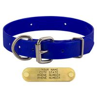 shop BLUE 1 in. Day Glow D-End Collar