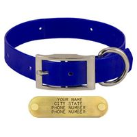 shop BLUE 1 in. Day Glow Standard Collar