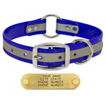 shop BLUE 1 in. Reflective Center Ring Collar