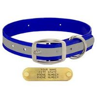 shop BLUE 1 in. Reflective Standard Collar