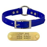 shop BLUE 3/4 in. Center Ring Day Glow Dog Collar