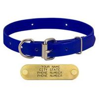 shop BLUE 3/4 in. D-end Day Glow Collar