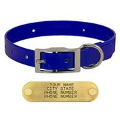 shop BLUE 3/4 in. Day Glow Standard Collar
