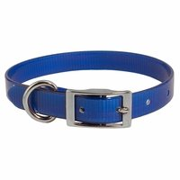 shop Blue 3/4 in. Standard Day Glow Collar