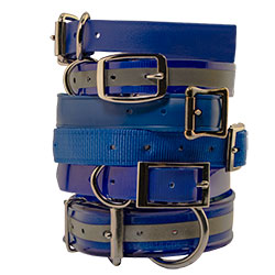 shop Blue Dog Collars