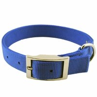 shop Blue Double Ply Nylon Collar