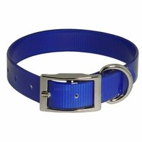 shop Blue Standard Day Glow Collar