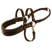 shop Brown Padded TufFlex Roading Harness