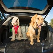 shop SUV Cargo Area Protective Covers