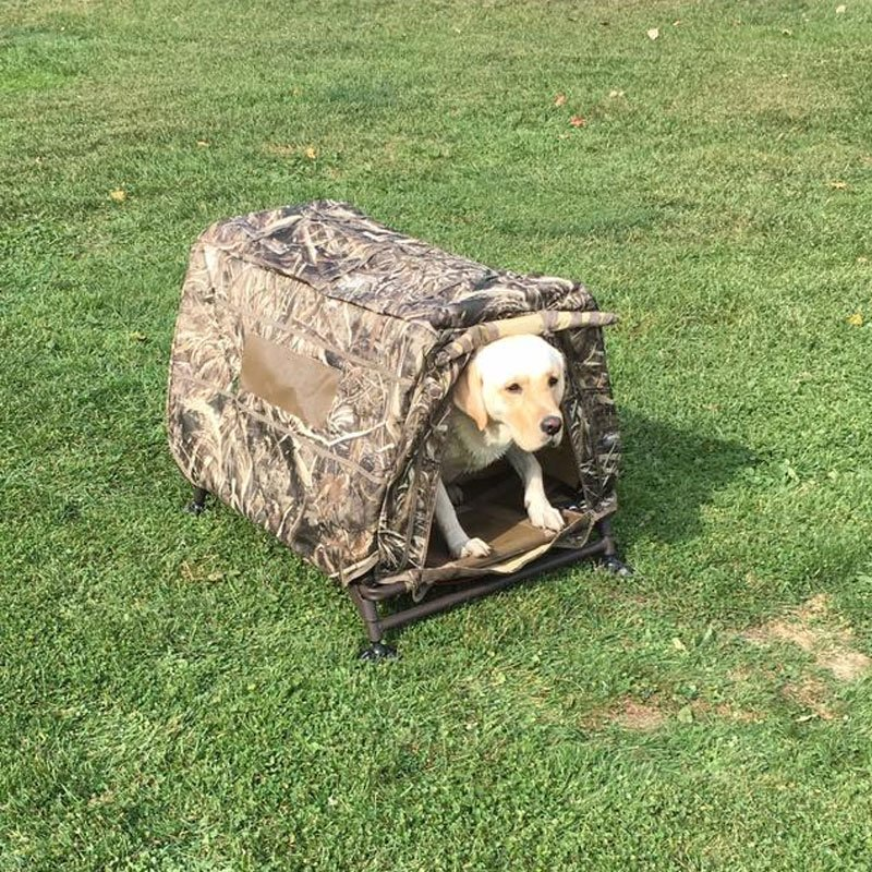 Customer Photo: Brian's Yellow Lab in her Field House Blind