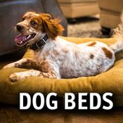 Hunting Dog Beds
