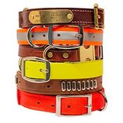 Personalized Dog Collars with Name Plate