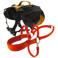 buy  Dog Harnesses, Packs, and Tethers