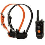 shop Dogtra 202C Remote Dog Training Collar 2-dog