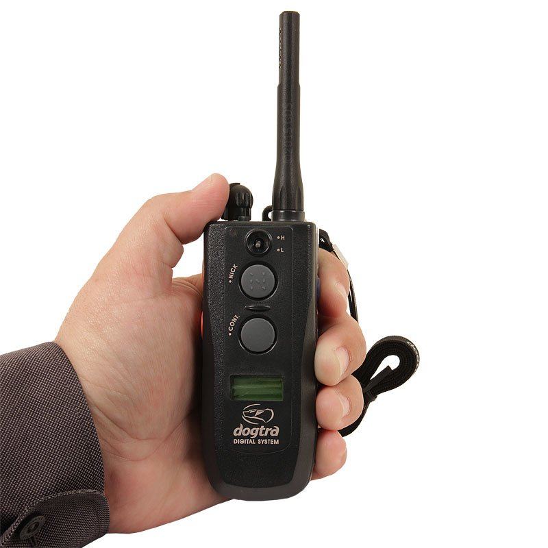 Dogtra 2500 T&B Transmitter in Hand