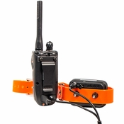 shop Dogtra 2700 T&B Collar and Transmitter on Charger