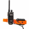 Dogtra 2700 T&B Collar and Transmitter on Charger