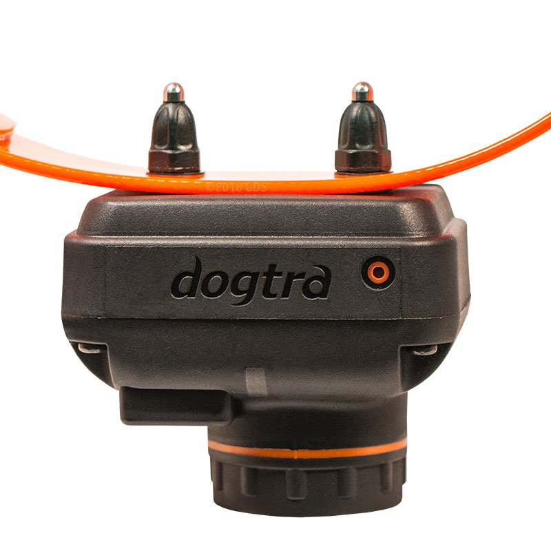 Dogtra 2700 T&B Collar Front