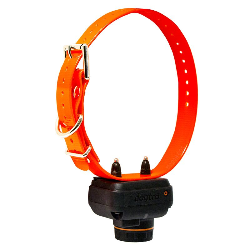 Dogtra 2700 T&B Whole Collar